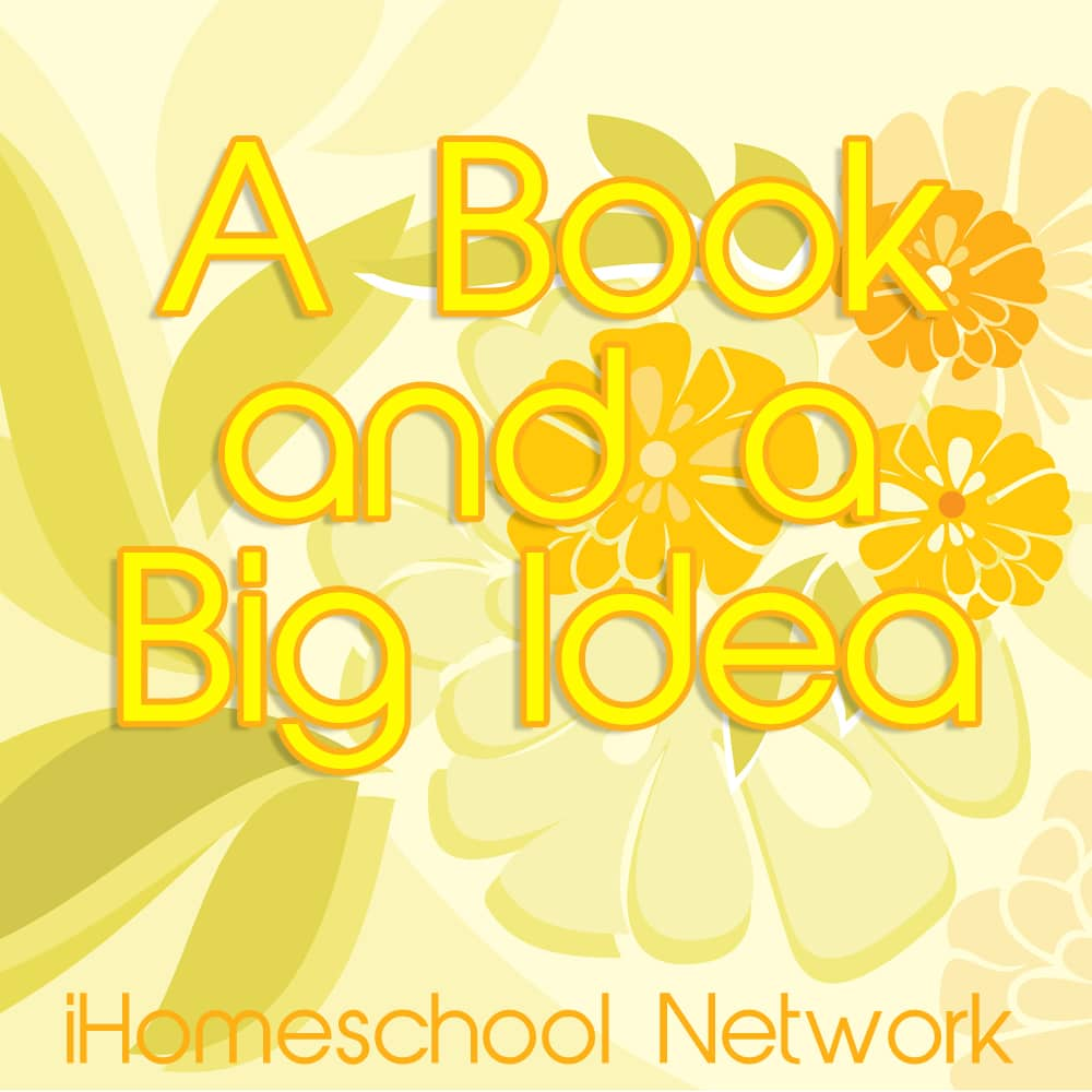 Book-Big-Idea-Summer