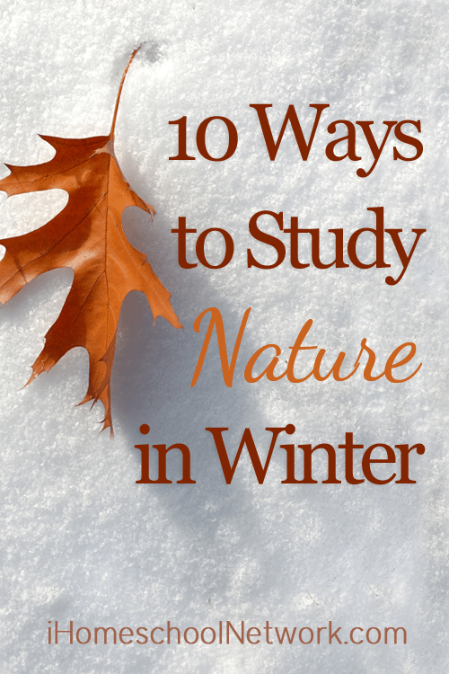 10 Ways to Study Nature in Winter | @iHomeschoolNet | #ihsnet