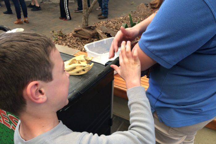 hands on homeschool field trip snake