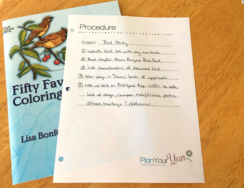 7 Must-Have Tools for Your Homeschool Planner Procedure Lists