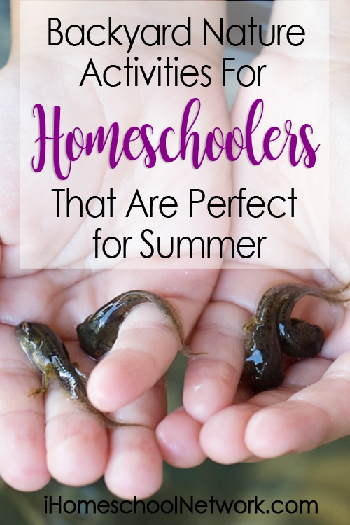 Backyard Nature Activities for Homeschoolers That Are Perfect for Summer