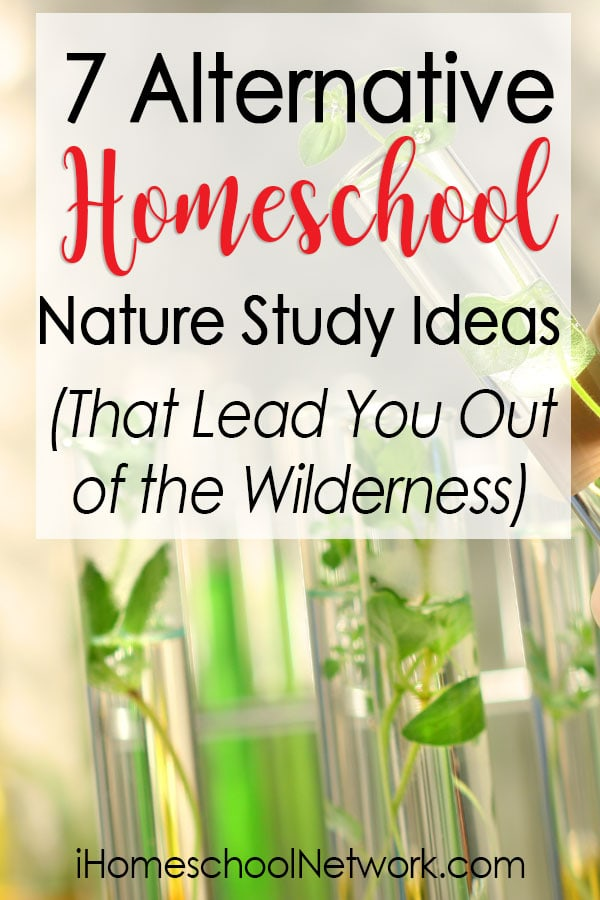 7 Alternative Homeschool Nature Study Ideas that Lead You Out of the Wilderness