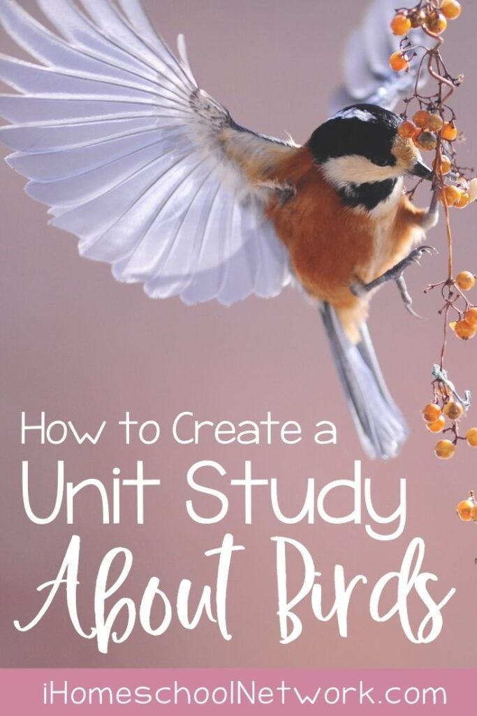 How to Create a Unit Study About Birds