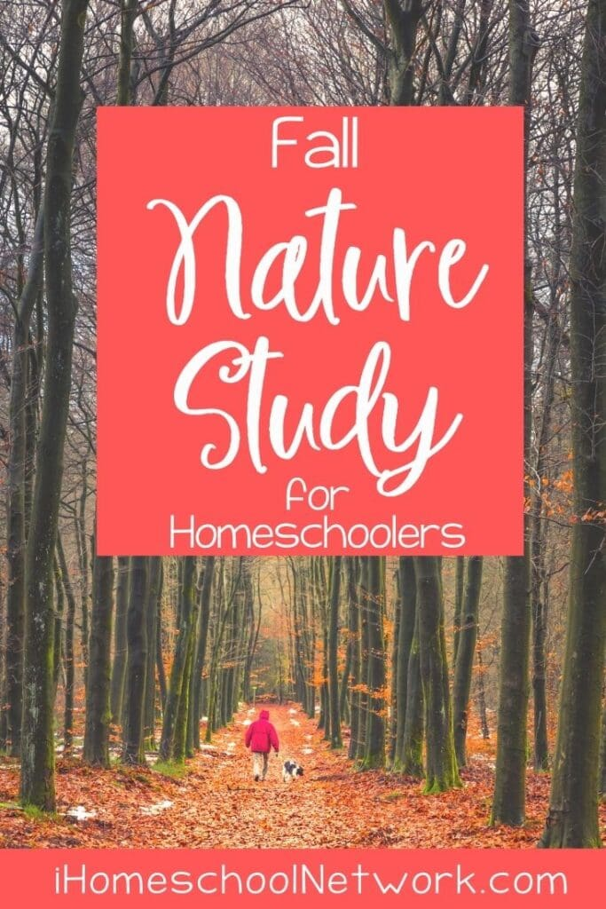 Fall Nature Study for Homeschoolers
